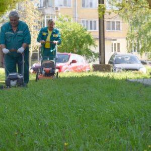 Косят 2000 дка тревни площи в Разград