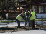 """Ремонтират разделителната ивица на ул. """"Цар Освободител"""" в Търговище"""